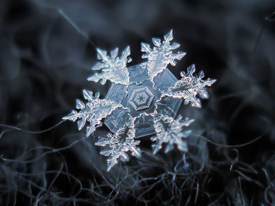 So, What's This I Hear About Snowflakes?