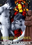 The Destroying Angel DVD